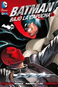 batman_bajo_capucha2